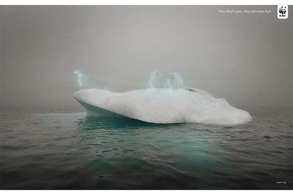 Изображение 72. 8 победителей Фотофестиваля в Нью-Йорке.. Изображение № 75.