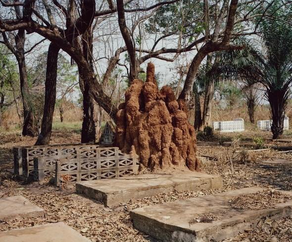 Ностальгия по покинутой Африке. Изображение № 11.