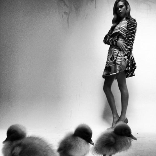 Съёмки: Playing Fashion, Schon, Vogue и другие. Изображение № 3.