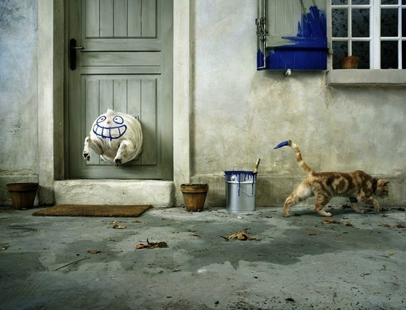 Изображение 6. Vincent Dixon. Рекламная фотография.. Изображение № 6.