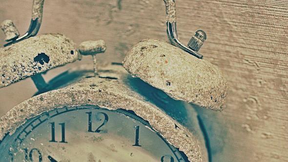"Bakcstage бренда ""Rose&Petal"" AW-2012. Изображение № 15."