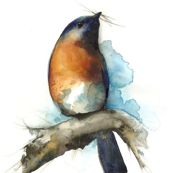 Изображение 34. Amber Alexander - животные, сияющие акварелью.. Изображение № 34.