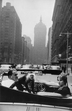 Гарри Виногранд о фотографии. Изображение № 22.