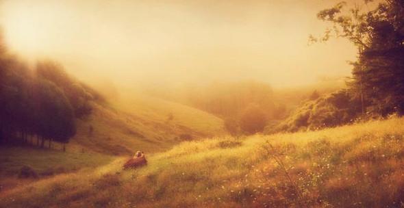 Келли Уитэм: красота по-новозеландски. Изображение № 7.