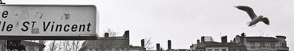 Саша Байч наКонкурсе Фотографий Google. Изображение № 2.