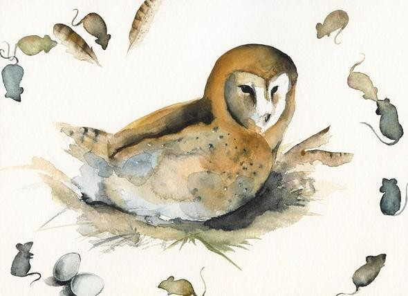 Изображение 30. Amber Alexander - животные, сияющие акварелью.. Изображение № 30.