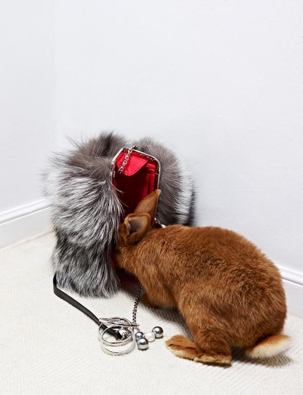 Съёмка: Животные в Viva! Moda. Изображение № 4.