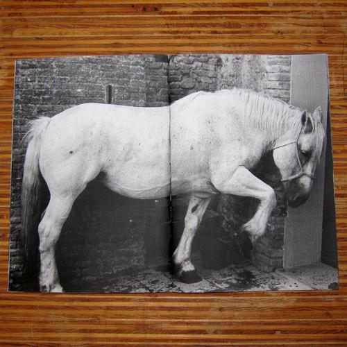 Изображение 34. 5 блогов о независимых фотокнигах и зинах.. Изображение № 29.