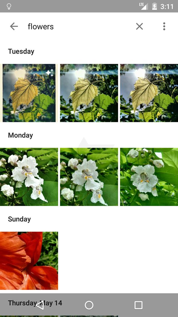 СМИ выложили скриншоты приложения Google для фотографий . Изображение № 25.