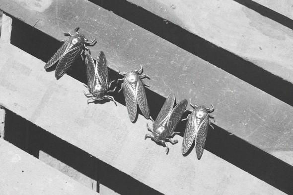Небо в алмазах: 10 молодых марок украшений, часть 1. Изображение № 101.