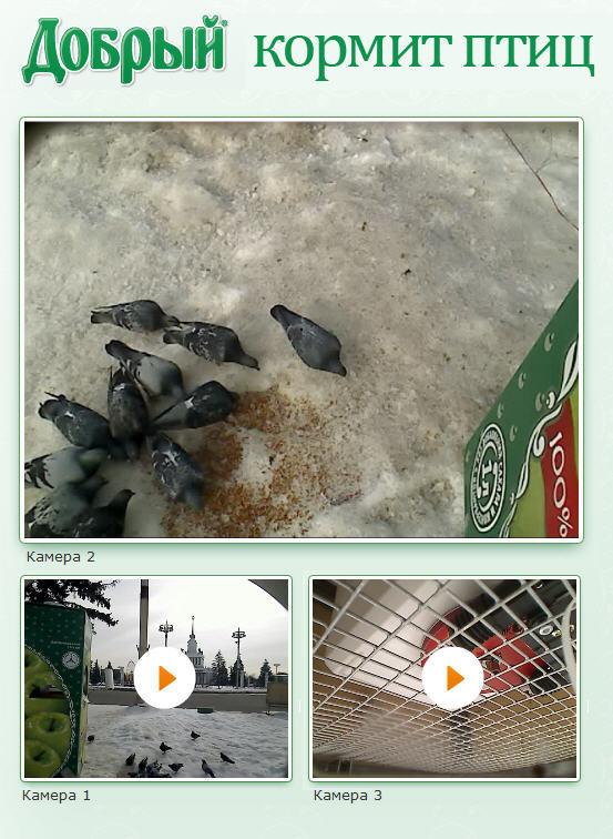 Будьте добры, покормите птиц!. Изображение № 4.