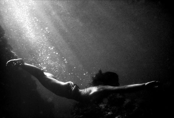 Подводная жизнь глазами фотографа Карлоса Франко. Изображение № 11.