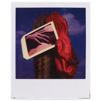 20 фотоальбомов со снимками «Полароид». Изображение №82.