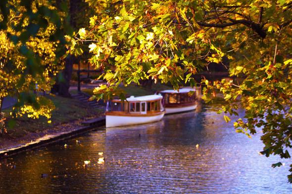 Золотая осень в Риге. Изображение № 1.