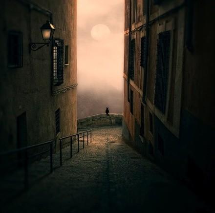 Luis beltran. красота снов. Изображение № 16.