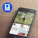 Дизайнеры критикуют мобильное приложение Paper. Изображение № 10.