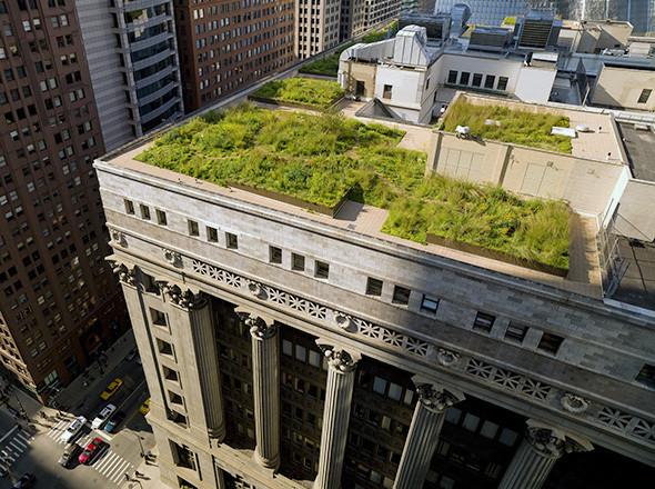 Зеленая архитектура. Изображение № 60.