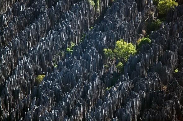 Каменный лес Цинги-де-Бемараха на Мадагаскаре. Изображение № 44.