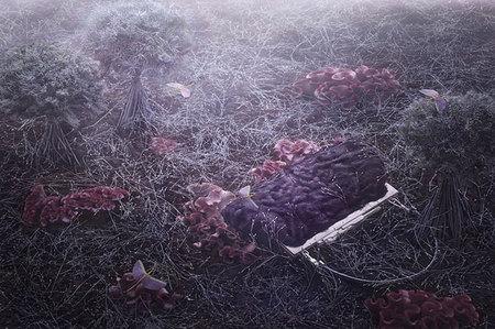 Гламурный многостаночник Peter Lippmann. Изображение № 20.