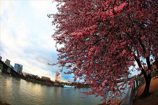 Почему весна становится короче на 30 секунд . Изображение № 1.