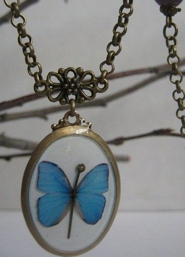 Бабочка и горностай. Изображение № 6.
