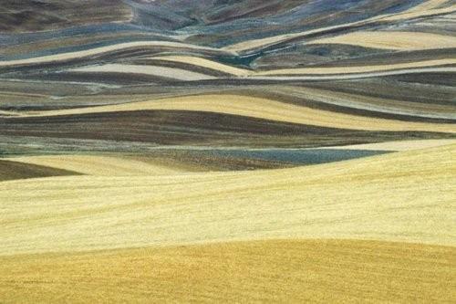 Франко Фонтана - первооткрыватель фотографической линии. Изображение № 6.