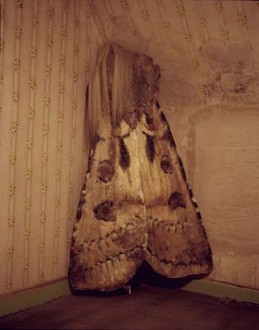Съёмка: Кристен Макменами в объективе Тима Уокера. Изображение № 7.