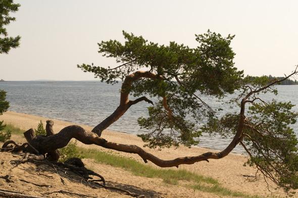 Поход по Ладожскому озеру. Изображение № 22.