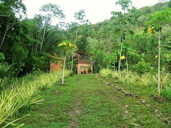 The paradise builders. Экопоселения Южной и Центральной Америк. Изображение № 40.