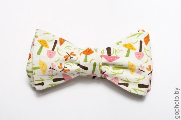Весна Да да, пора одевать Галстуки - бабочки. Изображение № 10.