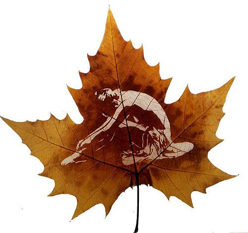 Резьба по листьям. Изображение № 2.