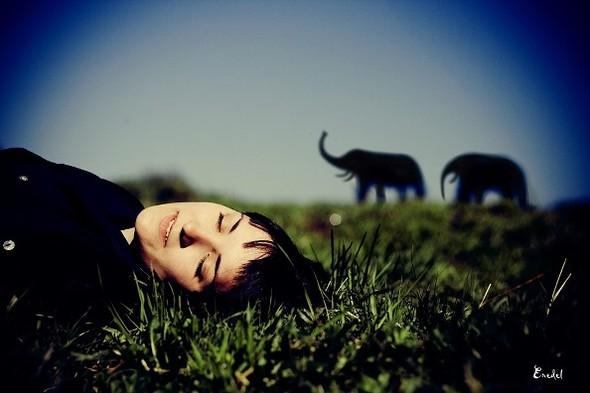 Фотограф Виктор Eredel. Изображение № 10.