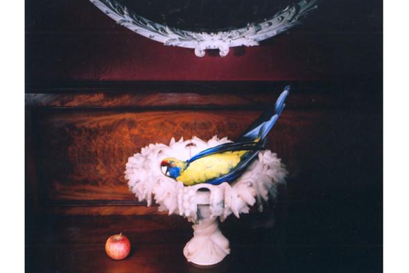 Фотография Marian Drew. «Манипулированный» still life, освещенный узким источником света. В других фотографиях из этой серии использована световая кисть. Изображение № 24.