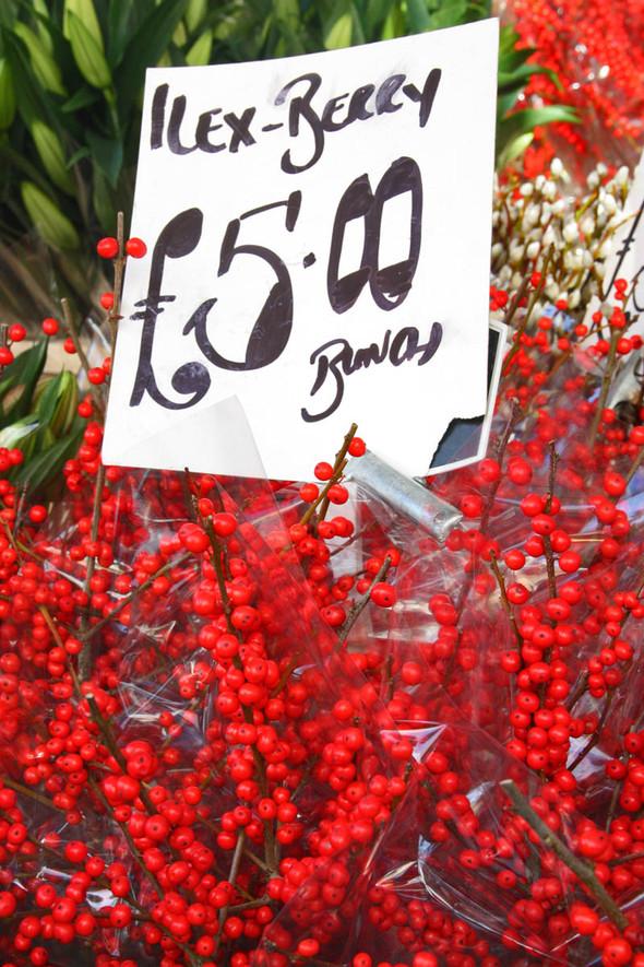 Columbia Road Flower Market/Цветочный рай. Изображение № 23.