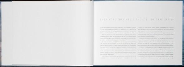 Летняя лихорадка: 15 фотоальбомов о лете. Изображение №89.