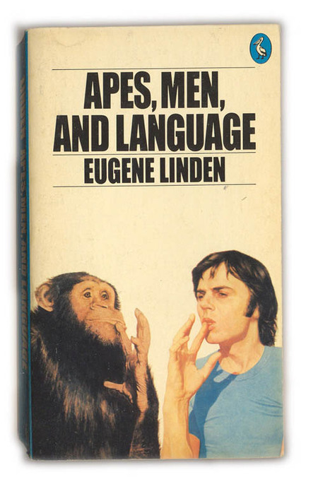 apes and language
