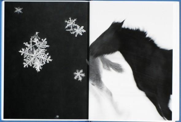 9 атмосферных фотоальбомов о зиме. Изображение № 16.