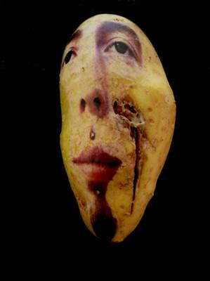 Картофельные портреты. Изображение № 20.