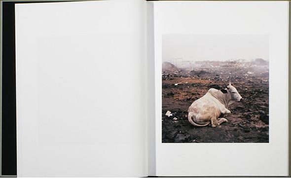12 альбомов фотографий непривычной Африки. Изображение № 80.