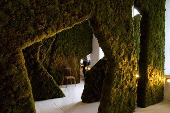 Диалог с природой: вертикальные сады. Изображение № 31.