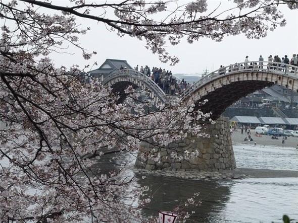 Самые красивые мосты мира. Изображение № 16.