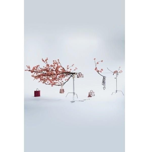 Изображение 14. Лукбук: Loewe Cherry Blossom.. Изображение № 14.