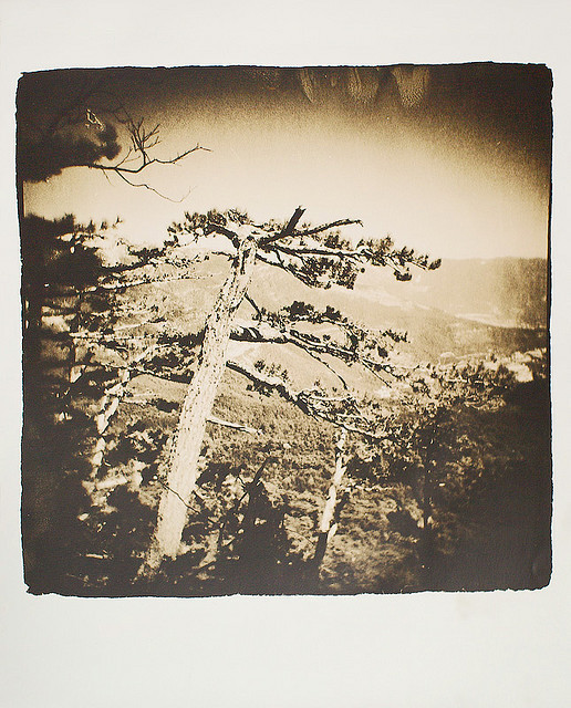 Изображение 16. Polaroidman Алексей Курбатов.. Изображение № 15.