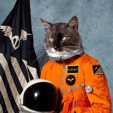 Klaxons анонсировали новый альбом. Изображение № 1.