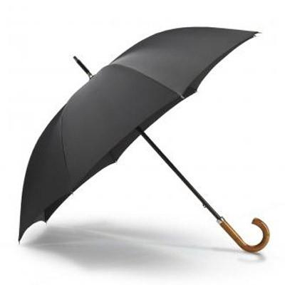 Дизайнерские модели зонтов. Изображение № 2.