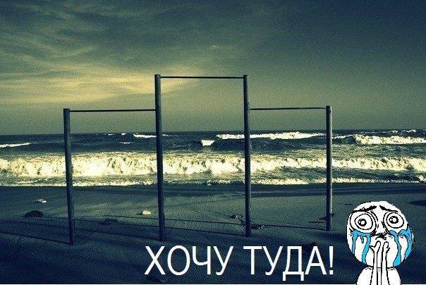 Мемы 2012. Изображение № 38.