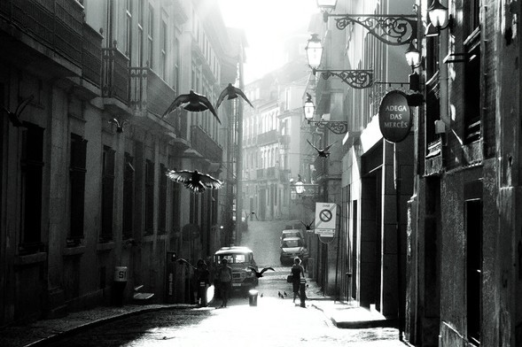 Жанровое фото отRui Palha. Лиссабон, Португалия. Изображение № 3.