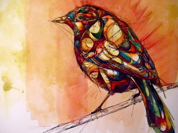 Птицы Abby Diamond. Изображение № 6.