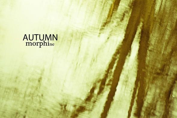 AutumNmorphine. Изображение № 7.