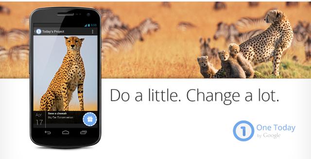 Google представил приложение для сбора пожертвований. Изображение № 1.